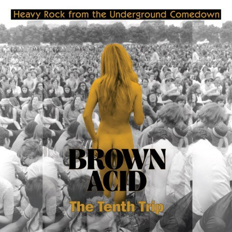 BROWN ACID- THE TENTH TRIP (HEAVY ROCK FROM THE UNDERGROUND COMEDOWN) COMP CD