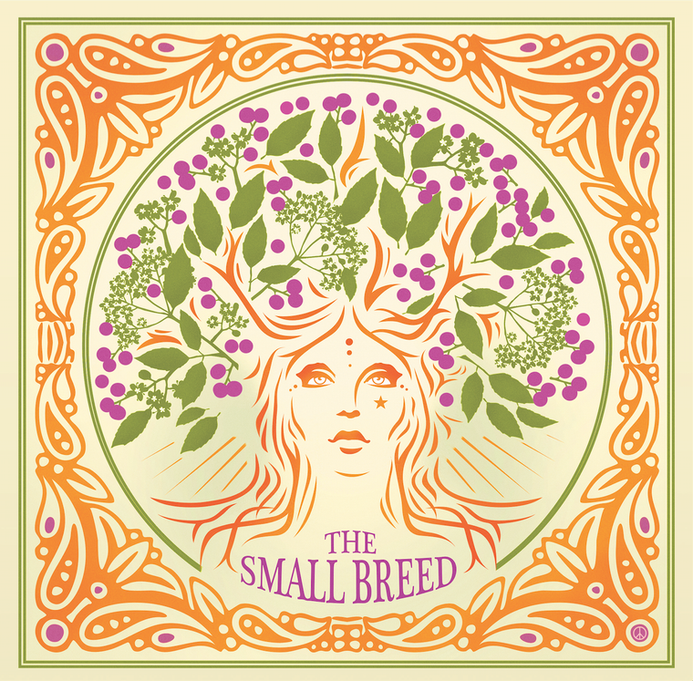 SMALL BREED   -An Elderflower Parliament (Classic 60s style psych pop)  45 RPM