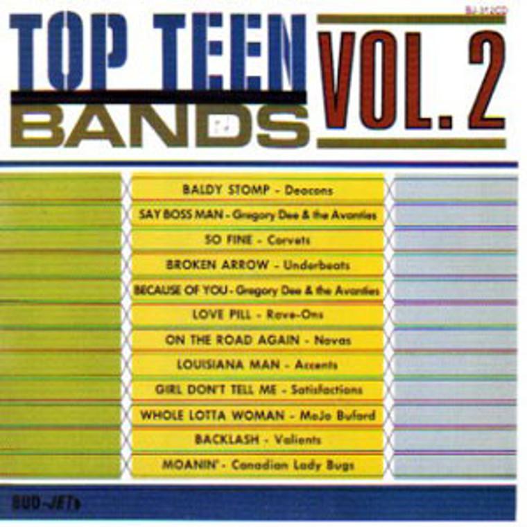 TOP TEEN BANDS VOL 2  -60s GARAGE-  COMP CD