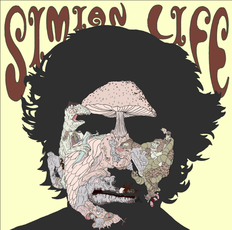 SIMIAN  LIFE-Another Way Down  (Rob Campanella)   45 RPM