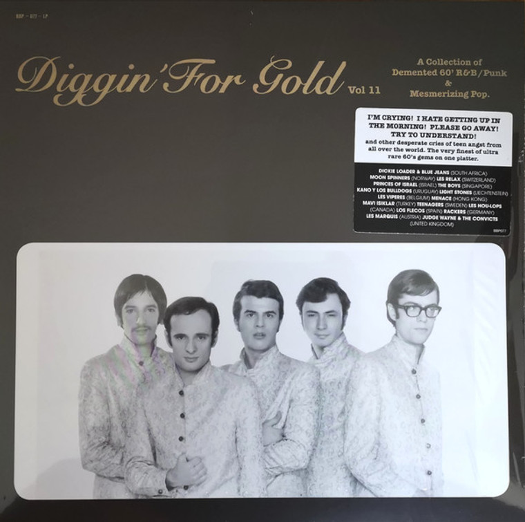 DIGGIN FOR GOLD  - Vol 11 (obscure '60s beat/garage/pop nuggets from around the world) COMP LP