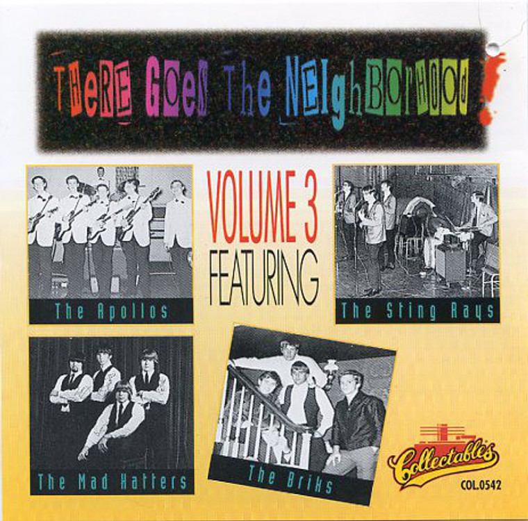 THERE GOES THE NEIGHBORHOOD  - Vol 3 (60s rare Garage) COMP CD