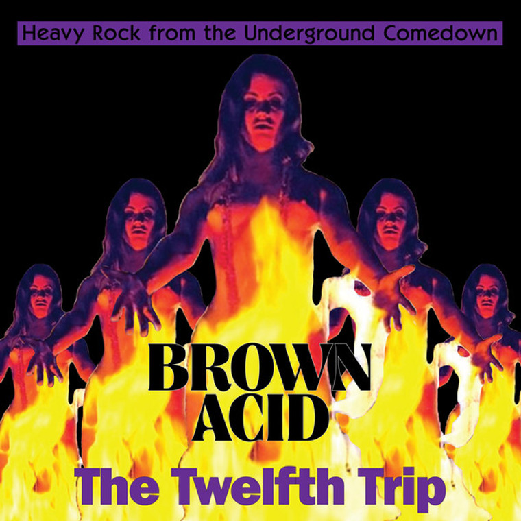 BROWN ACID   -The Twelfth Trip (60s and 70s heavy psych/proto metal tracks)  WHITE VINYL  COMP LP