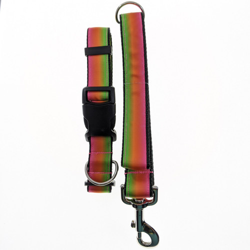 Rainbow Ombre Dog Collar & Leash Set (Large)