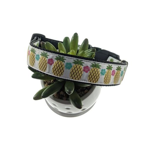Pineapple Hibiscus Dog Collar (Large)