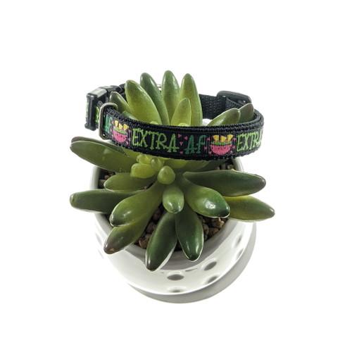 Extra AF dog collar (X-Small)