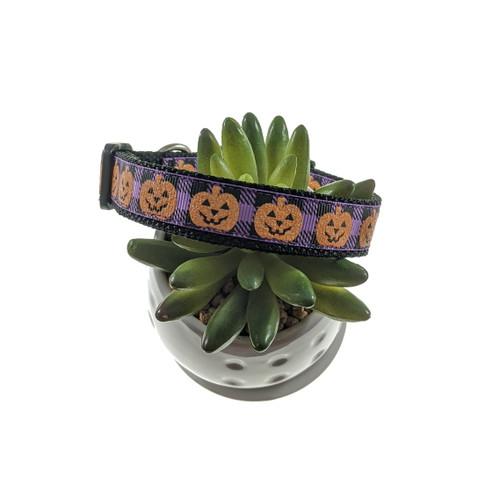 Jack-O-Lantern on Purple Plaid Dog Collar (Medium)