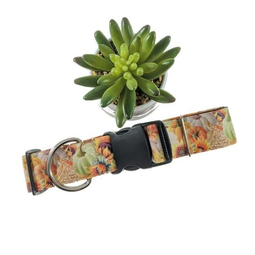 Simply Autumn Dog Collar (X-Large)