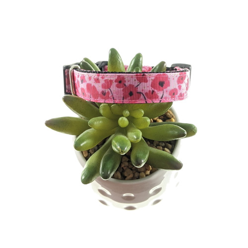 Poppies on Pink dog collar (Small)