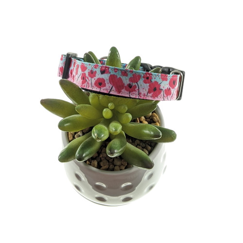 Poppies on Ombre dog collar (Small)