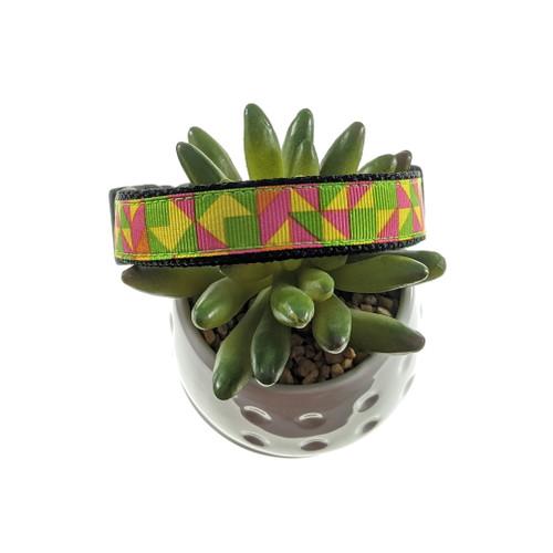 Neon Abstract dog collar (Medium)