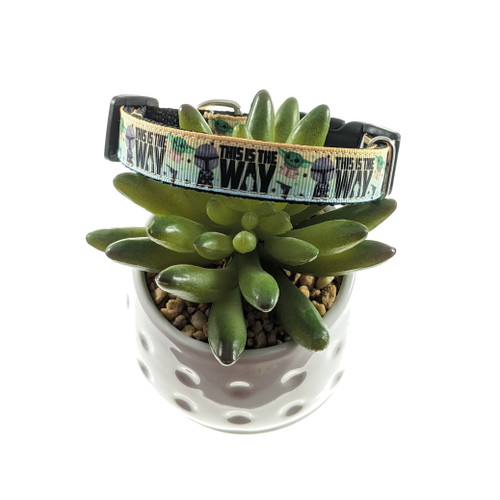 This is the Way dog collar (Small)