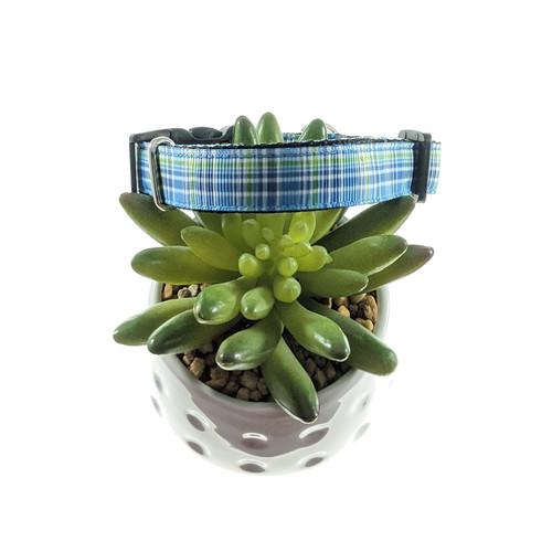 Blue & Green Plaid dog collar (Small)