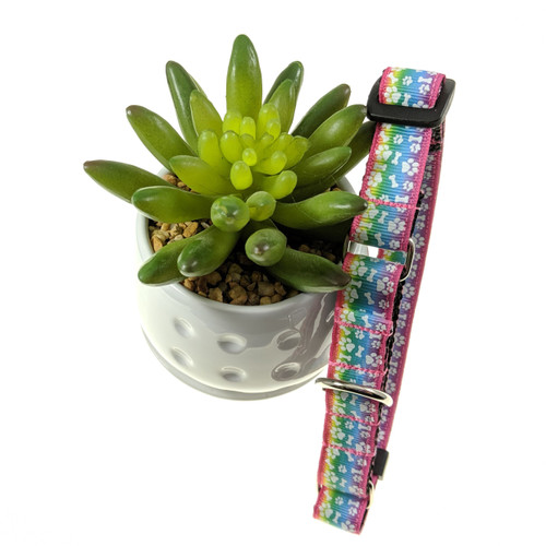 Pastel Rainbow Paws Martingale dog collar (Small)