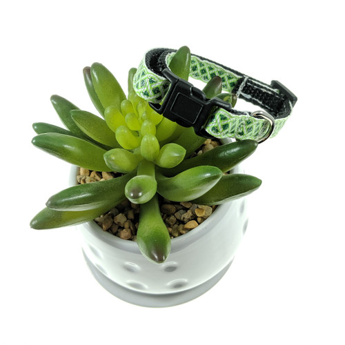 Green and White Celtic Dog Collar (XX-Small)