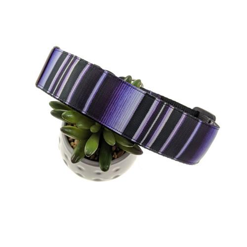 Purple Serape dog collar (XL)
