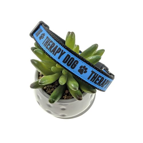 Blue Therapy Dog dog collar (Medium)