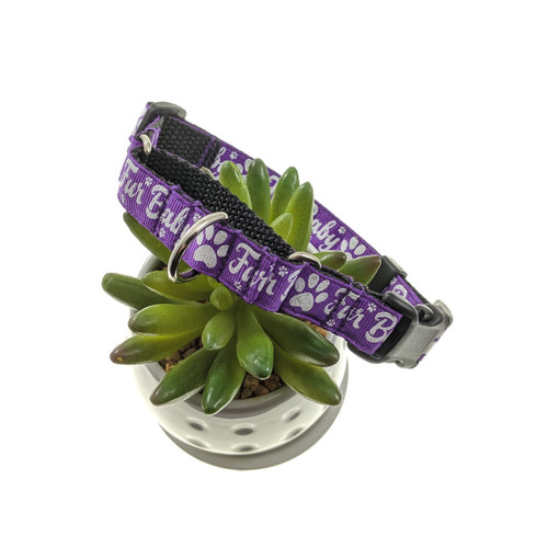 Fur Baby on Purple  W/Buckle martingale collar (Small)