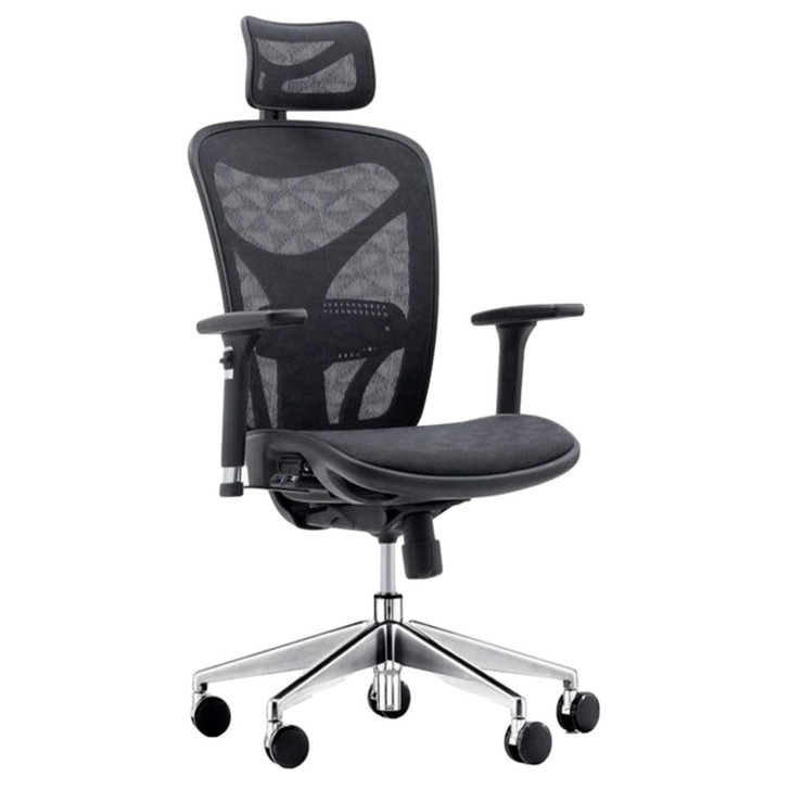ErgoDC Ergonomic Office Chair High Back Full Mesh Black