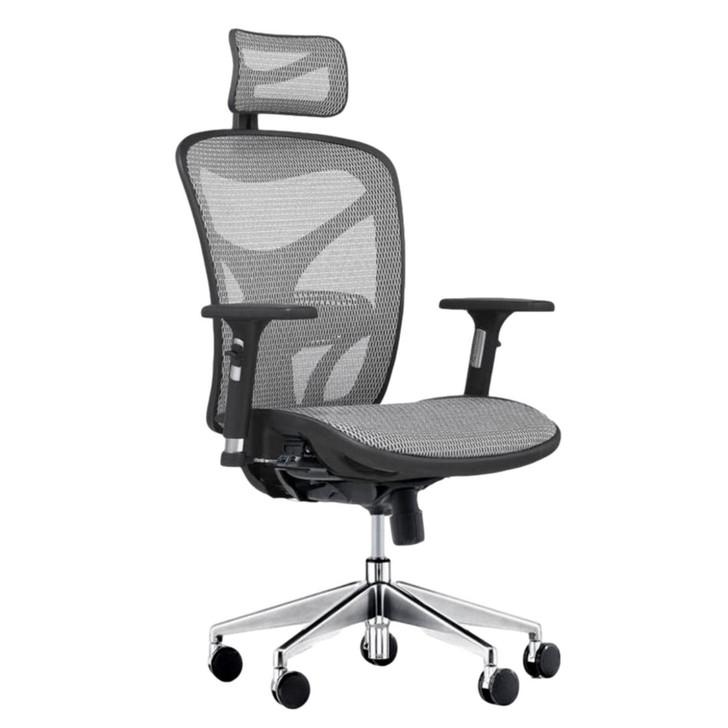 ErgoDC Ergonomic Office Chair High Back Full Mesh Grey