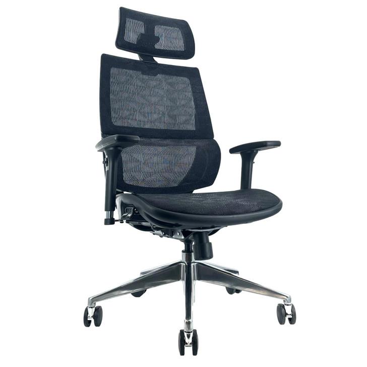ErgoDC Ergonomic Executive Office Chair