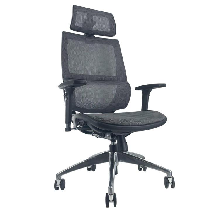 ErgoDC Ergonomic Executive Office Chair High Back Full Mesh Grey