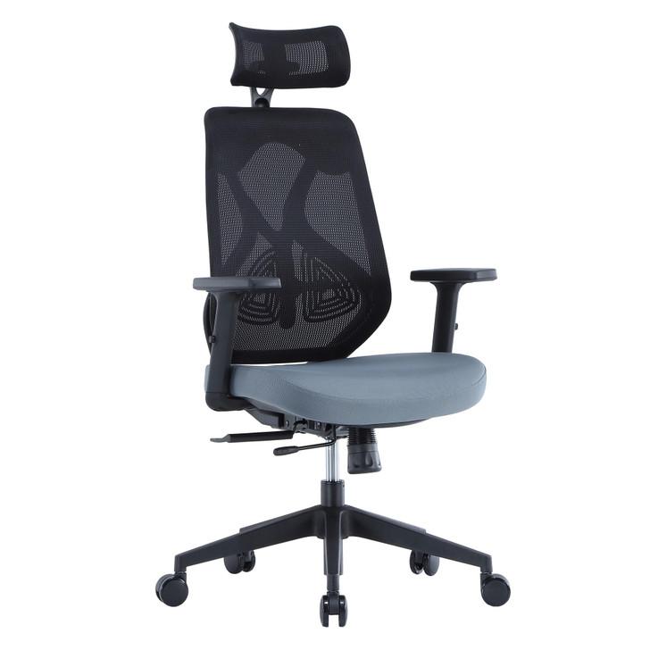 ErgoDC Ergonomic Designer Office Chair High Back Mesh
