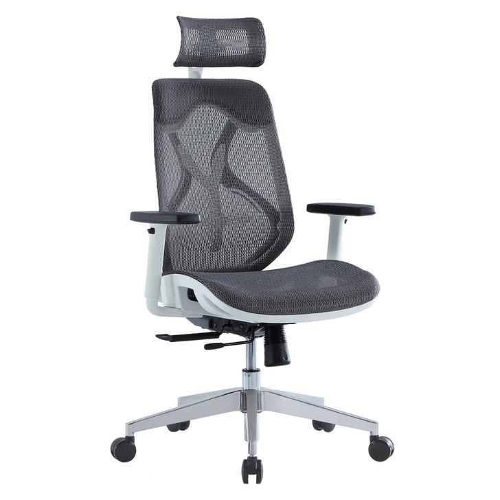 ErgoDC Ergonomic Designer Office Chair High Back Full Mesh Grey