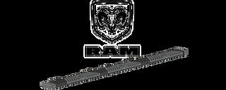 Ram Truck - Wheel to Wheel A2 Steps (pair)