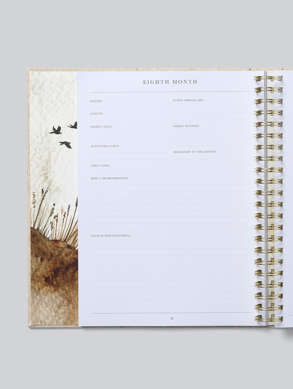 Write to Me Baby Journal Your First Five Years Oatmeal at Baby Barn Discounts