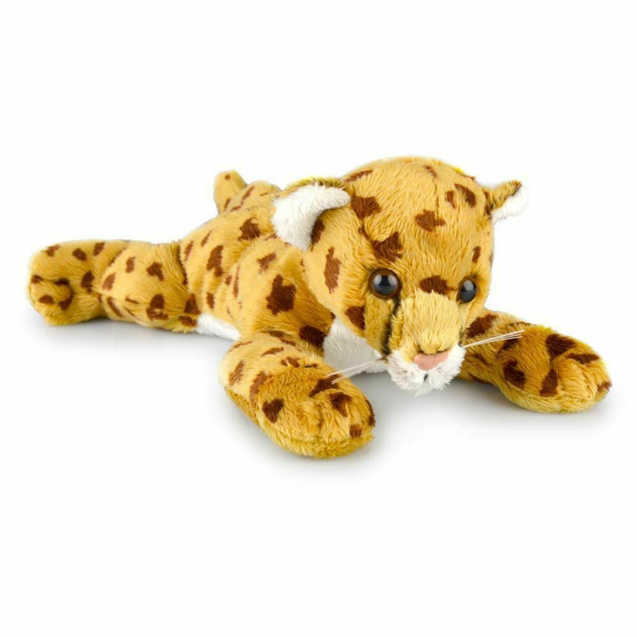 Korimco Cheetah Charlie Conga Cub 23cm at Baby Barn Discounts Korimco beautiful plush toy collection to your Animal Kingdom collection with soft silky texture that would get any kid addicted and crave for more hugs