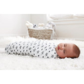 Aden + Anais Muslin Classic Swaddle Set 2 Pack