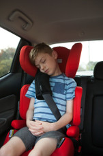 InfaSecure Seat Belt Pillow