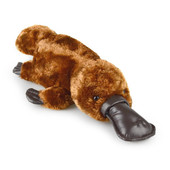 Korimco Silky the Platypus Soft Plush Toy 37cm at Baby Barn Discounts A beautifully designed & made silky soft wildlife plush perfect for wild life collector.
