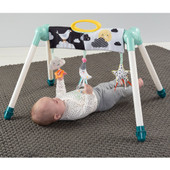 TAF Toys 2 in 1 Mini Moon Take To Play Gym at Baby Barn Discounts