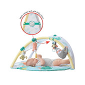 Skip Hop Tropical Paradise Activity Gym and Soother