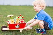 Tender Leaf Toys Garden Wheelbarrow Set at Baby Barn Discounts