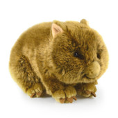 Korimco Wally the Wombat Soft Plush Toy 24cm