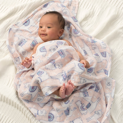 Aden Anais Muslin Classic Swaddle Set 2 Pack
