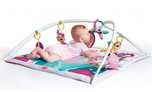 Tiny Love Tiny Princess Tales Gymini Play Gym