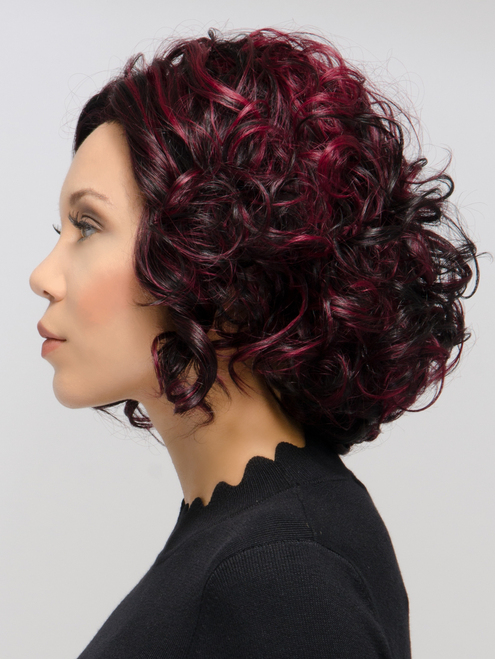 Soft Curls Lace Front Wig (Sherri Shepherd)