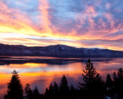 Sherbet Sunrise