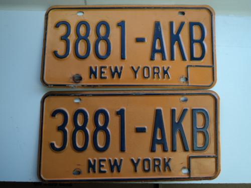 PAIR NEW YORK License Plates 3881 AKB