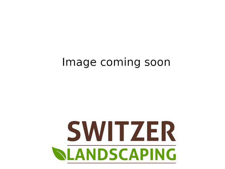 Image Switzer Landscaping, LLC. All rights reserved.