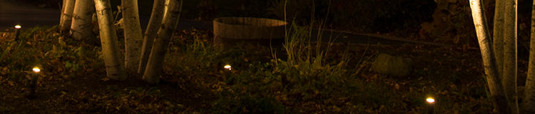 -lightsbottom.jpg