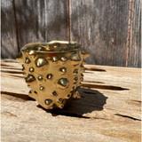 Golden Spiky Planter