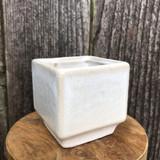 Cream Cube Planter