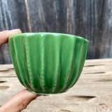 Emerald Green Mini Cactus Cup Planter