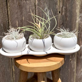White Air Plant Holder Trio