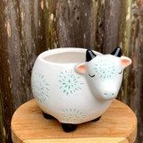 Cute Cow Planter